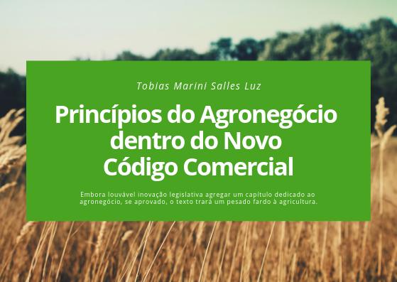 Princípios do Agronegócio dentro do Novo CCom.png